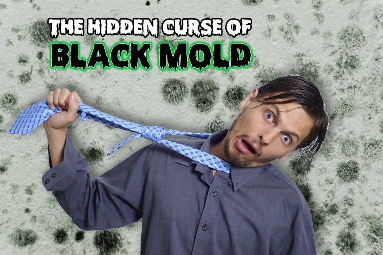 Black Mold: Real Estate Investing's Hidden Curse!