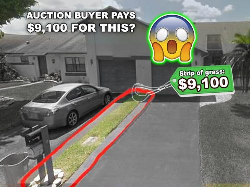 Auction Buyer Pays $9,100 for Property, then Discovers it's a 1 Foot Wide Grass Strip Worth $50!