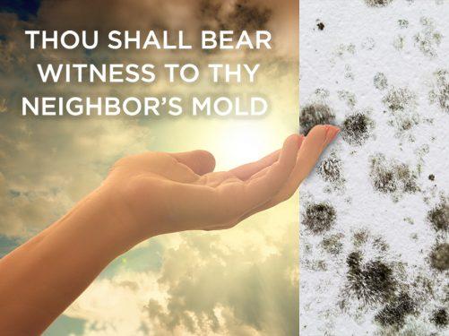 Mold in codo
