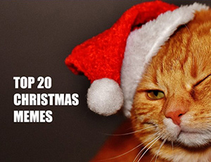 Top 20 Christmas Memes