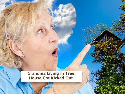 Grandma Living in Tree House Got Kicked Out