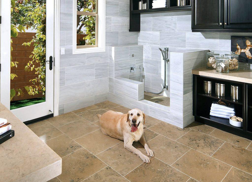 Dog Shower Design 2