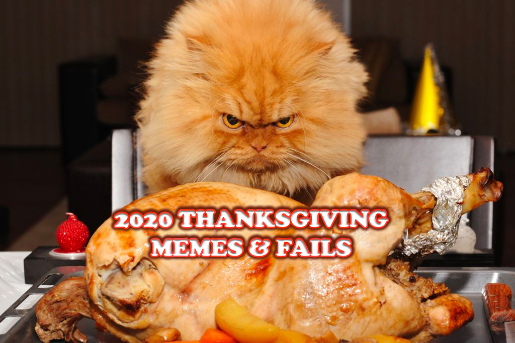 funny thanksgiving memes and fails